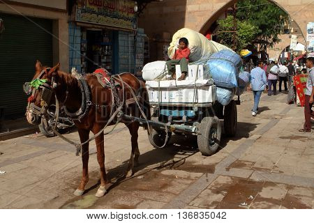 A Transportation with horse carriage in Egypt, 01. December 2012
