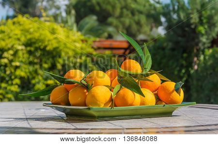 Fresh tangerines just plucked from the tree lie on mosaic table in rectangular green plate