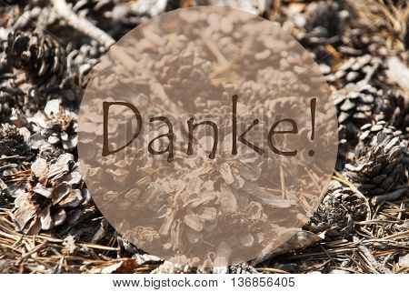 Texture Of Fir Or Pine Cone. Autumn Season Greeting Card. German Text Danke Means Thank You