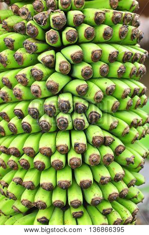 Texture of banana flower in a coutryside in Vietnam
