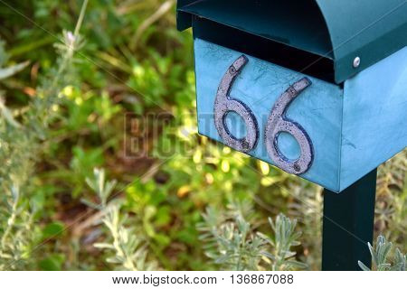Blue letterbox with number 66. Grass in the background.