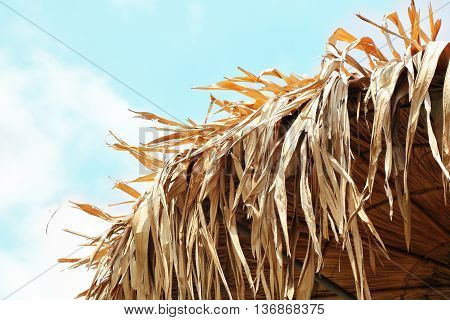 Thatch roof background hay or dry grass background.