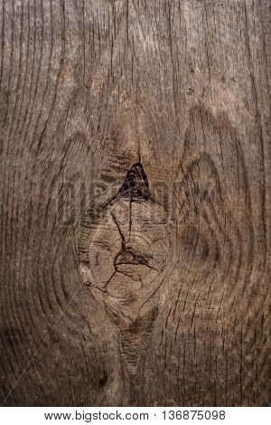 Close up old wood texture with grain