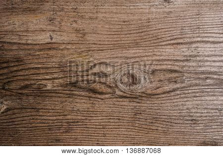 Old wood texture with grain, wood texture