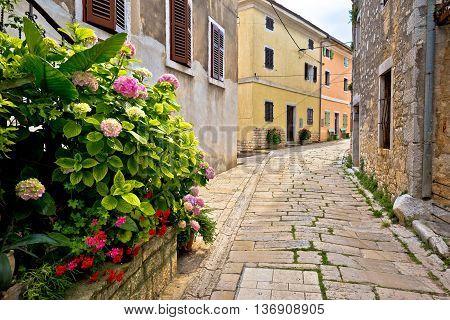 Stone street of Visnjan view Istria Croatia