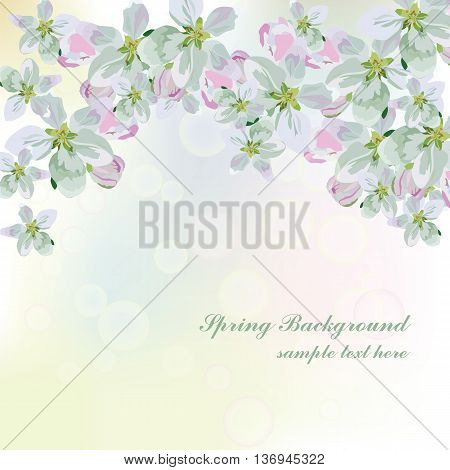 Vector Spring Floral background. Flower bouquet vintage cover. Flourish blossom flowers card with place for text
