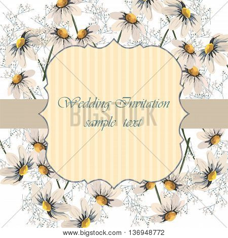 Watercolor painted Chamomile flowers. Vector Wedding card or invitation with Chamomile flowers. Greeting card in Vintage or Retro style