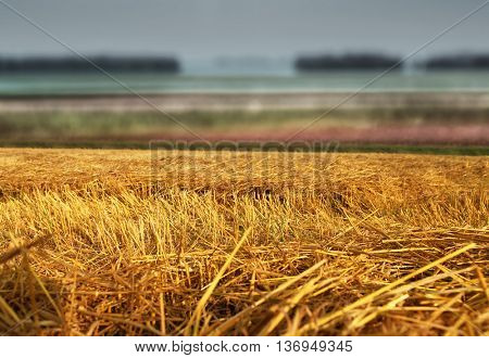 hay straw stack texture on field, agriculture background