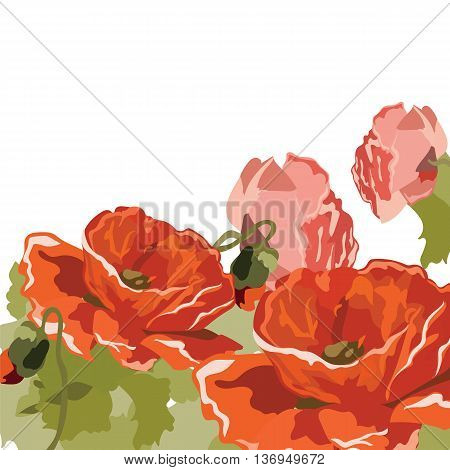 Vintage Watercolor poppy flowers background. Vector Retro floral background