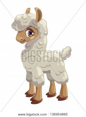 Little cute lama, guanaco isolated on white, vector illustration