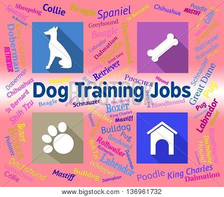 Dog Training Jobs Indicates Canines Jobs And Employment