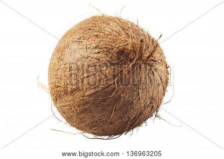 Fresh Coconut On White Isolated Background.