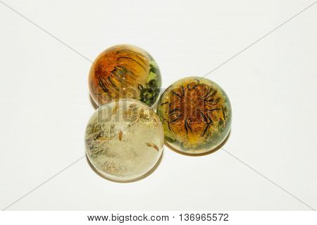 Dandelion In Epoxy Resin