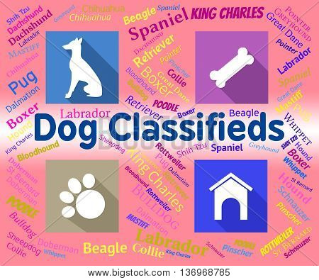 Dog Classifieds Represents Pups And Canines Media