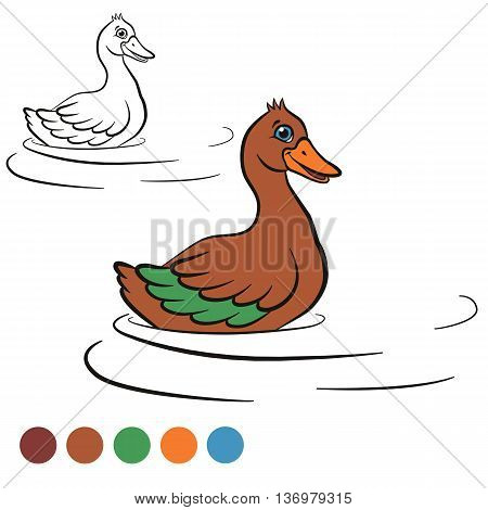 Coloring page. Color me: duck. Little cute duck swims in the water and smiles. It`s happy.