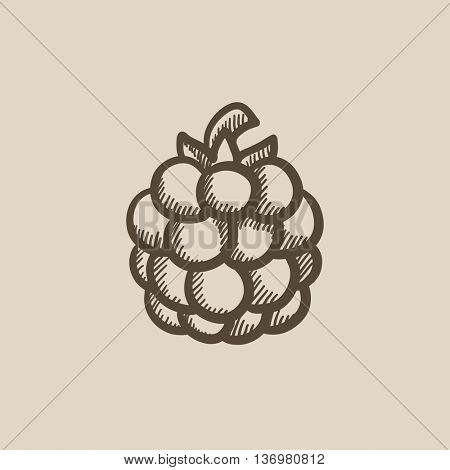 Raspberry vector sketch icon isolated on background. Hand drawn Raspberry icon. Raspberry sketch icon for infographic, website or app.