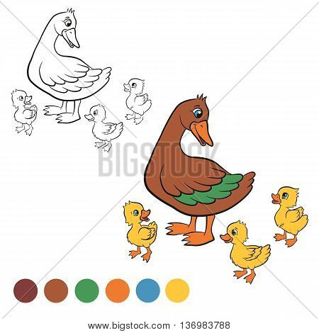 Coloring page. Color me: duck. Kind duck and free little cute ducklings walk. They are happy and smile.