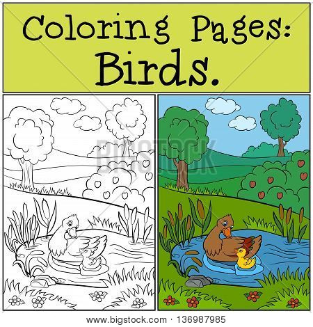 Coloring Pages: Birds. Mother duck swims with her little cute duckling in the pond.