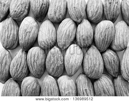Black and white almonds arranged in grid on white background