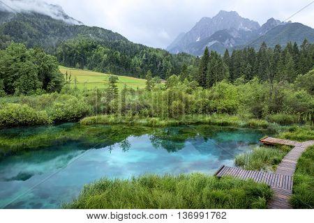 Zelenci pond near Kranjska Gora in Slovenia