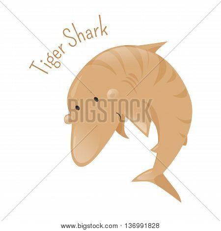 Tiger shark. Isolated cartoon character. Galeocerdo cuvier saltwater fish. Carnivore underwater dangerous predator. Marine hunter. Part of series of various australian animal species. Widlife concept