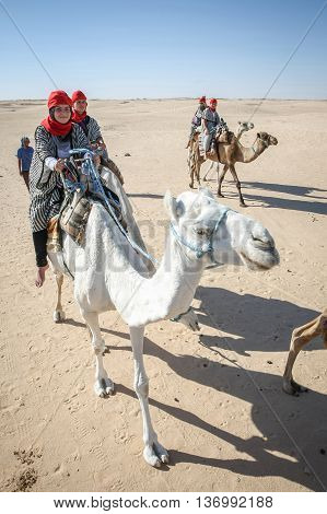 Tourists Tour On Camels In Douz