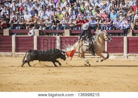 Ubeda SPAIN - October 2 2010: Fermin Bohorquez bullfighter on horseback spanish Ubeda Jaen Spain