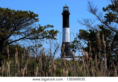 The fire Island lighthouse from behind the brush