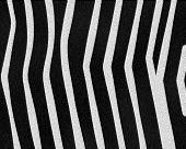 Zebra Wide Stripes Short Fur poster