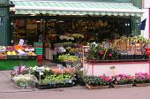 stock photo of flower shop  - frontage of a florist shop - JPG