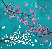 stock photo of cherry-blossom  - Vector illustraton of floral branches with birds and butterflies - JPG