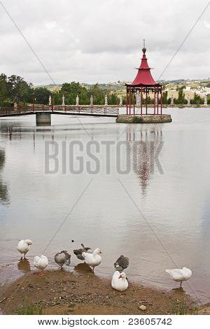 Lake Of Bandstand