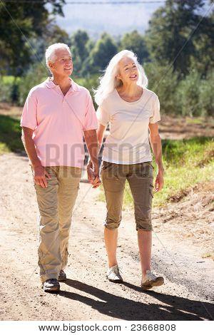 Senior Couple on Land gehen
