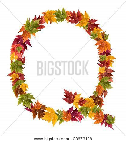 The letter Q made from autumn maple tree leaves