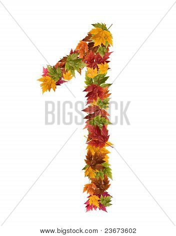 The number 1 made from autumn maple tree leaves