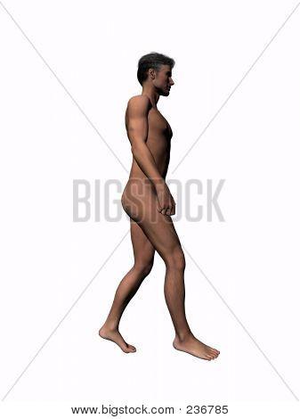 Anatomy Of The Man Walking 6.