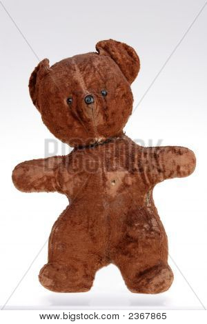 Seedy Teddy Bear