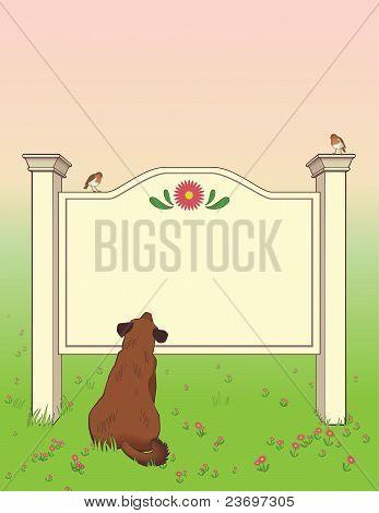 Dog Looking At Signboard