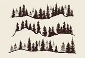 Vintage Engraving Forest. Doodle Sketch Fir-trees Vector Set. Illustration Of Fir And Pine Tree Silh poster