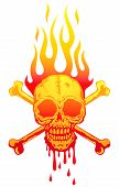 foto of jaw drop  - Vector Illustration of the skull in flames - JPG