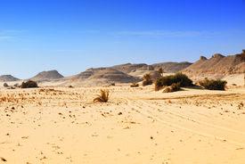 stock photo of sahara desert  - Sahara desert traces of a vehicle in the Sahara desert Western desert Egypt Africa - JPG