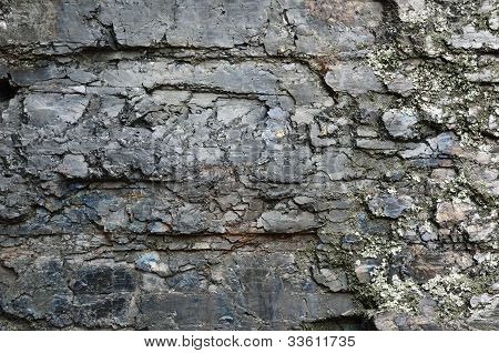 Close-up Of Black Fossil Coal Surface