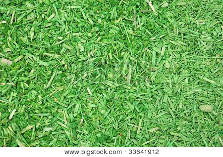 Green Woodchips