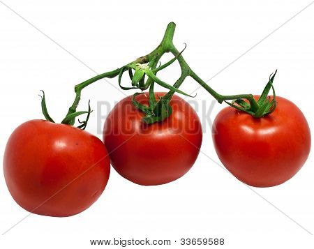 Tomatoes close up isolated on white background