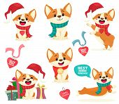Puppies Corgi Set. Christmas Corgi Puppies With Medallions, Gifts. Cute Puppy Isolates In Cartoon Fl poster