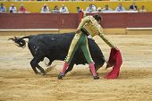 stock photo of bullfighting  - A matador fighting in a typical Spanish bullfight - JPG