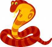 stock photo of king cobra  - Vector clip - JPG