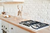 Stove In Christmas Kitchen. Gas-stove White Kitchen Furniture With Christmas Decor. Stylish Trendy W poster