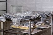 Fresh Chilled Fish Brought To Production For Processing And Packaging. poster