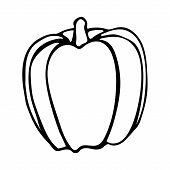 Vector Hand Drawn Outline Illustration Of Bell Pepper. Black Contour Doodle In Line Art Style. Sketc poster